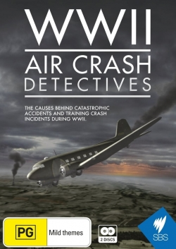 WWII Air Crash Detectives